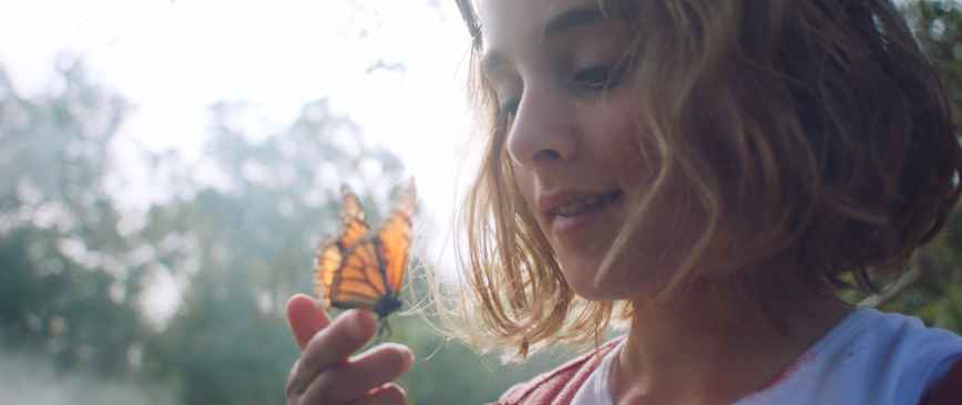 Butterfly // Short Film